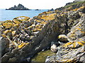 SX9149 : Headland at Kelly's Cove by Philip Halling