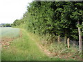 TM2563 : Footpath to Saxtead Green by Geographer