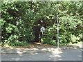 TQ3895 : Yardley Hill path by Roger Jones