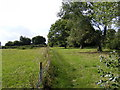 TM2660 : Footpath to St Andrew's Church by Adrian Cable