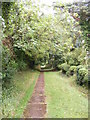 TG0524 : St.Andrew's Church Path by Adrian Cable