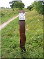 TG0624 : Marriott's Way footpath marker by Adrian Cable