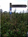 TG0624 : Marriott's Way footpath signpost by Adrian Cable