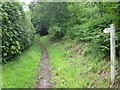 SO2413 : Bridleway (unmarked) on Gilwern Hill by Keith Salvesen