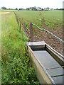 SU6236 : Trough on Bighton Downs by Colin Smith