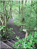 NY2824 : Steps into Brundholme Wood by Stephen Craven
