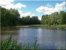 SJ8851 : Ford Green Nature Reserve, Smallthorne by Carl Farnell