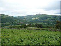 SO2220 : Bracken clad slopes of Crug Hywel by Jeremy Bolwell