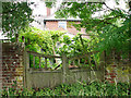TG1902 : Disused old gate onto Swardeston Common by Evelyn Simak