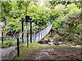 NY9027 : Wynch Bridge by David Dixon
