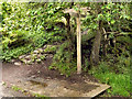 NY9027 : Pennine Way Footpath Sign by David Dixon