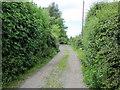 SJ4869 : Lane near Swinfordmill Farm by Jeff Buck