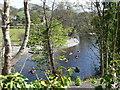 SJ2042 : Kayaking on the river Dee near Llangollen by Eirian Evans