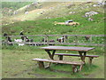 NX4971 : Picnic area at the Wild Goat Park by Ann Cook