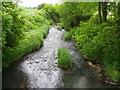 TQ7523 : River Rother, Salehurst by Maigheach-gheal