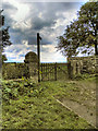 NY9913 : Gate and Signpost, Pennine Way, Bowes by David Dixon