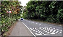 J4681 : The Ballyrobert Road, Crawfordsburn by Albert Bridge