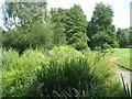 SU6452 : River Loddon - Eastrop Park by Sandy B