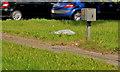 J2560 : Traffic counter near Hillsborough by Albert Bridge