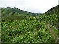 NN9734 : Little Glenshee by Anne Burgess