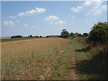 TF0611 : Rural Bridleway by Ajay Tegala