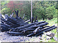 SE3244 : Charred timbers by Pauline E