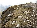 NN1971 : Aonach Beag summit ridge by Peter S