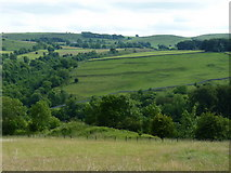 SK1273 : Settlement on the hillside above Chee Dale by Richard Law