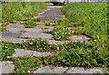 J1561 : Footpath, Moira roundabout by Albert Bridge