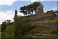 NZ0416 : The castle ruin at Barnard Castle by Ian Greig