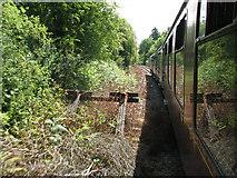 TQ5334 : Overgrown siding outside Eridge station by Stephen Craven