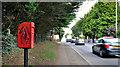 J3069 : Letter box, Finaghy, Belfast by Albert Bridge