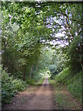 TG0723 : Marriott's Way footpath by Adrian Cable