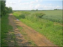 SK4964 : Longhedge Lane by Trevor Rickard