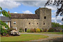 O0586 : Castles of Leinster: Athclare, Louth (1) by Mike Searle