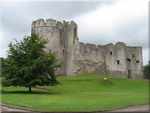 ST5394 : Chepstow Castle by Gareth James