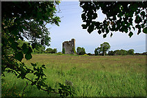 R9493 : Castles of Munster: Drumnamahane, Tipperary (1) by Mike Searle