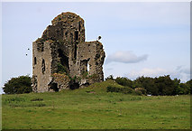 S1971 : Castles of Munster: Tullow, Tipperary (1) by Mike Searle
