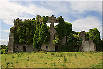 N7557 : Castles of Leinster: Tremblestown, Meath (1) by Mike Searle