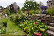 SX4268 : Garden - Cotehele House by Mick Lobb