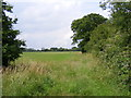 TM3770 : Footpath to Sibton Green (C212) by Adrian Cable