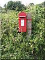 TM4465 : Flash Corner George V Letterbox by Geographer