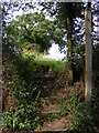 TM4465 : Footpath to Church Road by Geographer