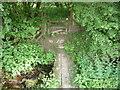 SN0818 : Footbridge and stile near Trefwynt Farm by Jeremy Bolwell