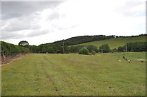 ST0642 : Fields around Wachet by Ashley Dace