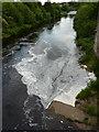 NZ0416 : River Tees by Alexander P Kapp