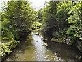 SD7311 : Bradshaw Brook by David Dixon