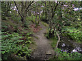 SD7311 : Path at the side of Bradshaw Brook by David Dixon