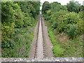 TL1497 : Nene Valley railway near Lynch Farm, Peterborough by Richard Humphrey
