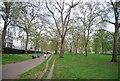 TQ2880 : Green Park by N Chadwick